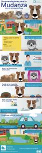 Infografia Mudanza con mascotas